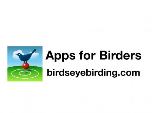 BirdsEye logo
