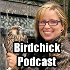 Birdchick Podcast