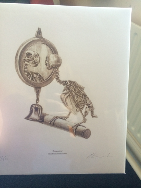 A signed print from one of my favorite bird artists:Katrina van Grouw ofThe Unfeathered Bird.
