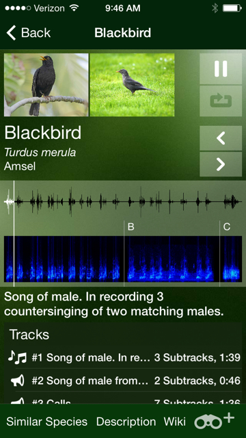 This was a cool bird song app that I downloaded for the trip and is called Bird Songs of Europe, North Africa and the Middle East.