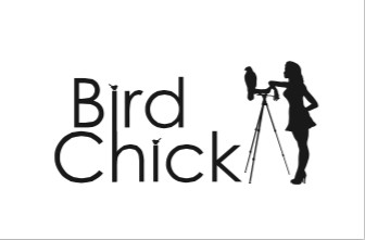 Birdchick Merchandise