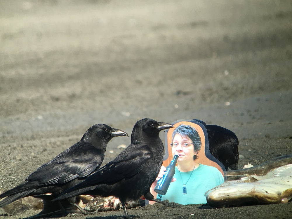 The northwestern crows wasted no time in joining Flat Michelle.
