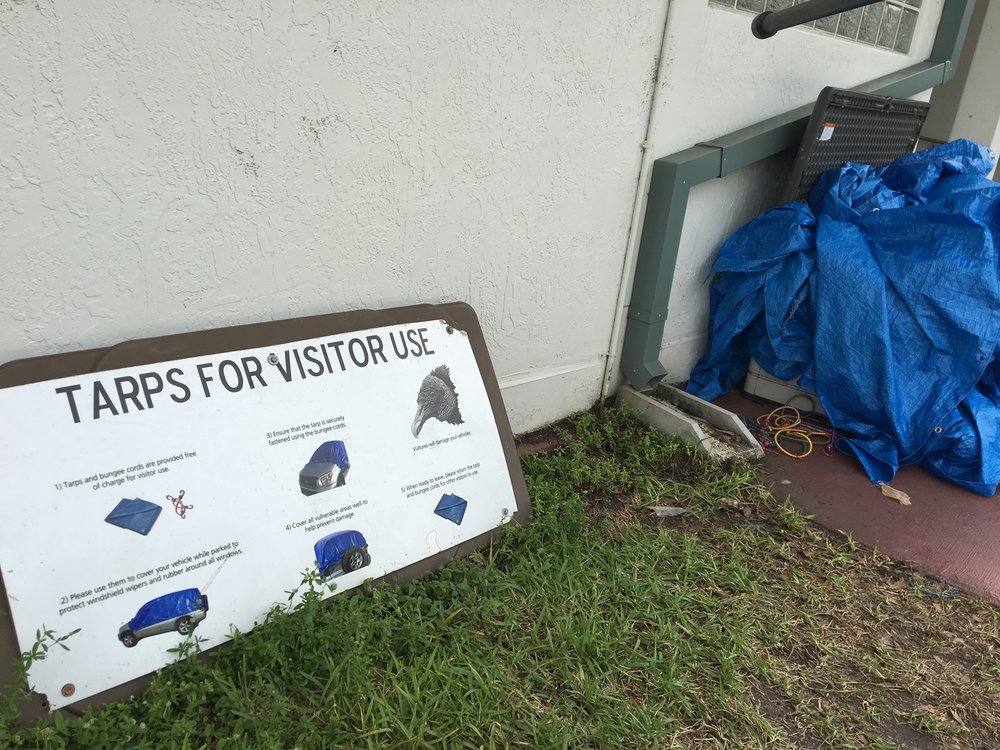 Signage at Royal Palm explains the whys and the hows of vulture protection in the parking lot.