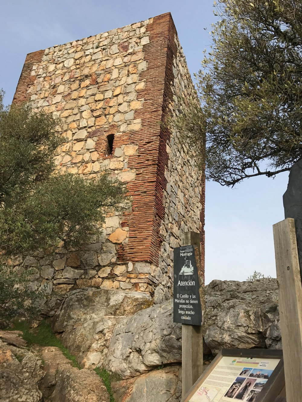 The castle in Monfragüe National Park offers dynamite views of griffon and black vultures as well as song birds on the trail up to it.