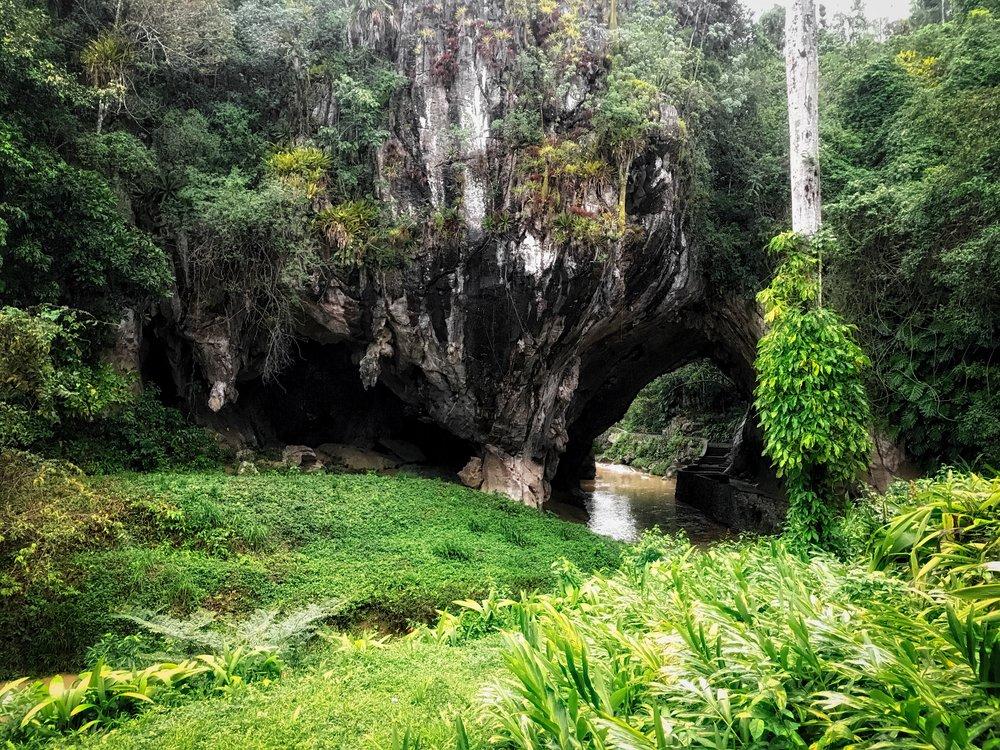 Cueva de los Portales in La Guira National Park