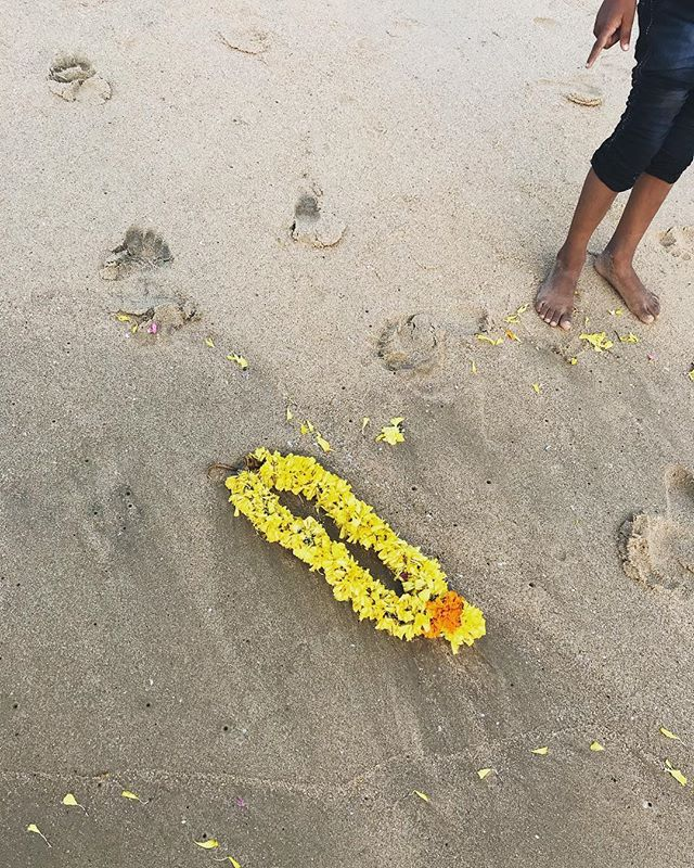 Beach treasure 👆✨💛 #india #beauty #splendore #treasureseverywhere