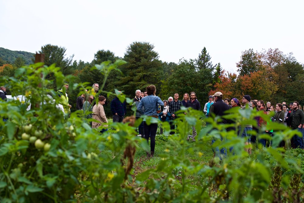 Brookfield Farm's Manager, Zoe Abrams takes dinner guests on a tour of the farm.