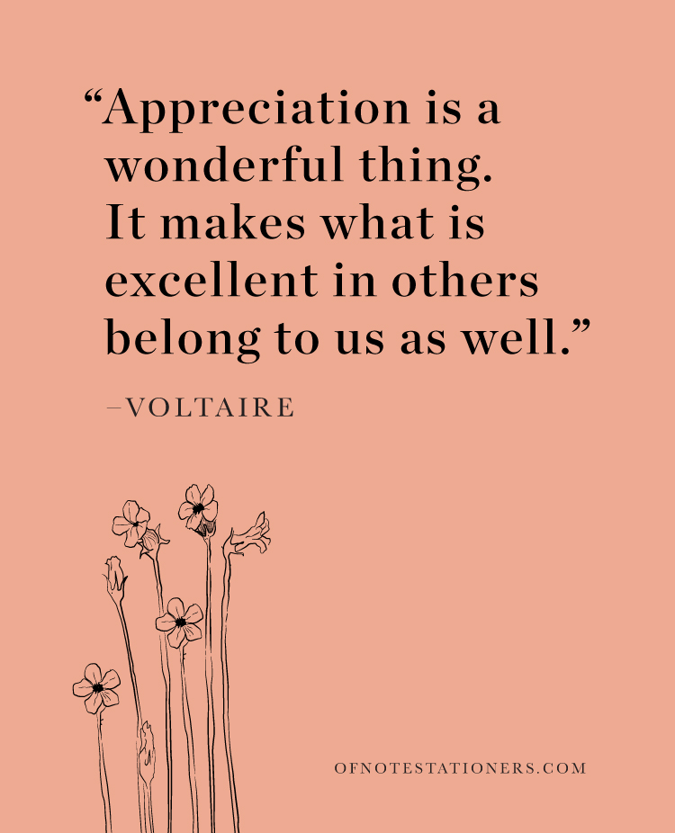 Appreciation is a wonderful thing | Voltaire | Of Note Stationers