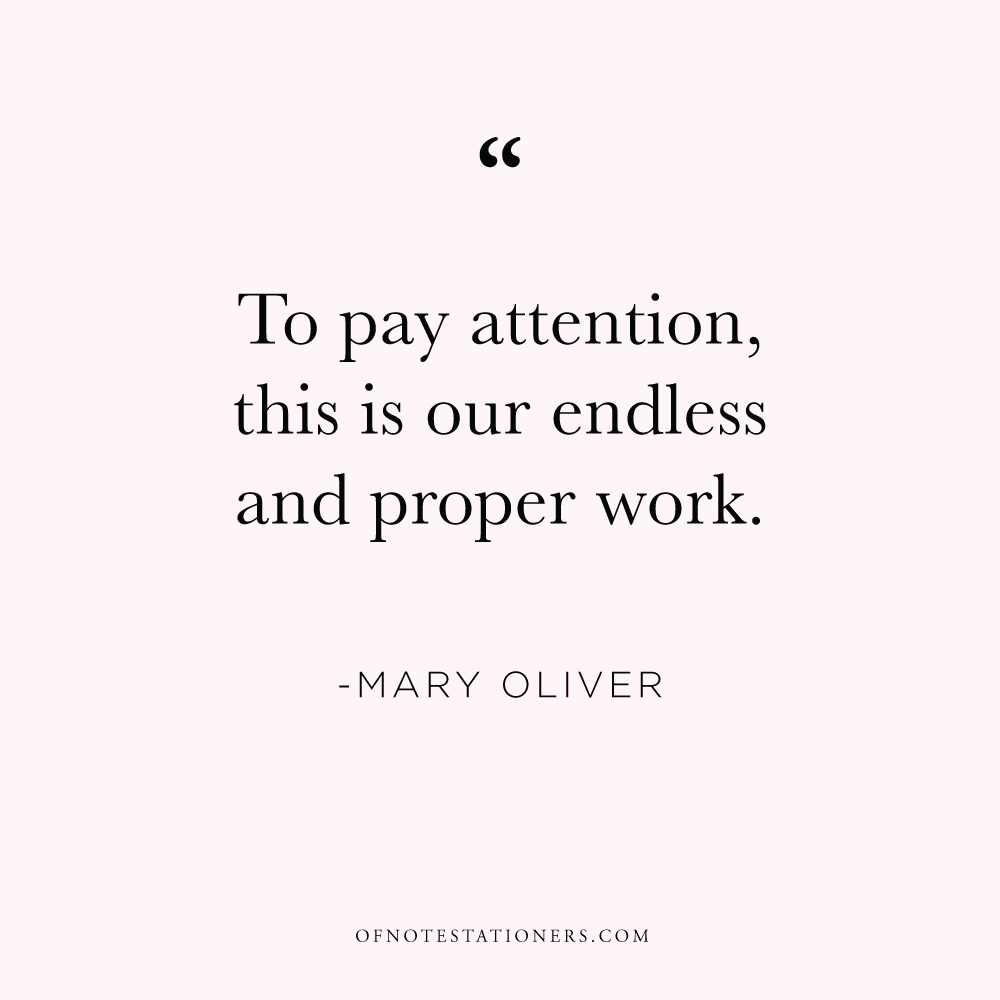 To pay attention, this is our endless and proper work. | Mary Oliver | Of Note Stationers blog