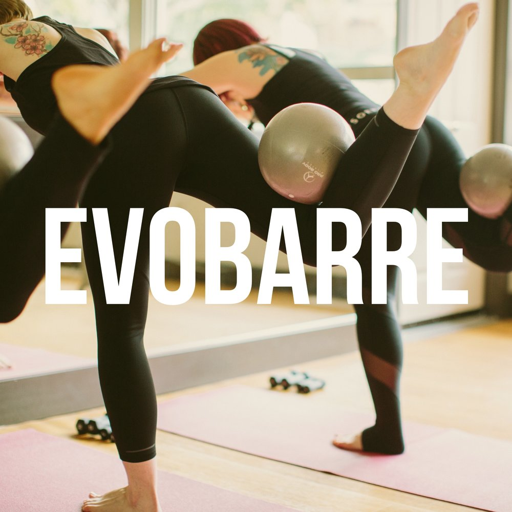 EVOBARRE2.JPG