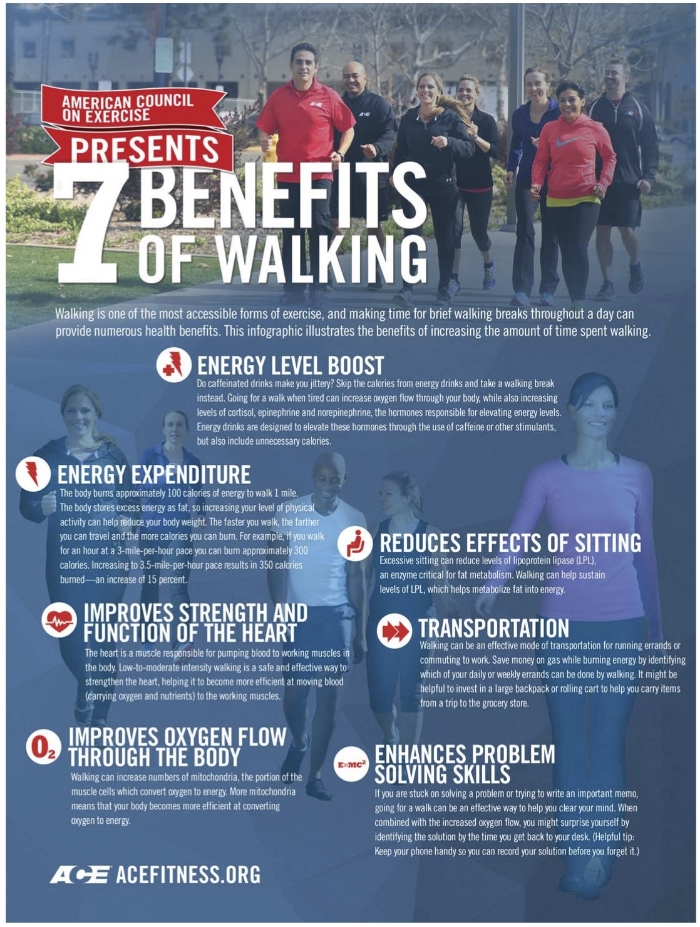 Infographic c/o ACE's Walk the Talk Fitpro Toolkit