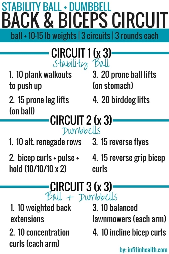 Stability Ball + Dumbbell Back & Biceps Circuit Workout