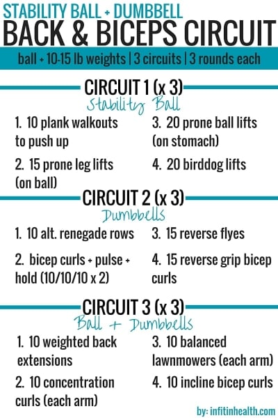 stability ball dumbbell back amp biceps circuit workout