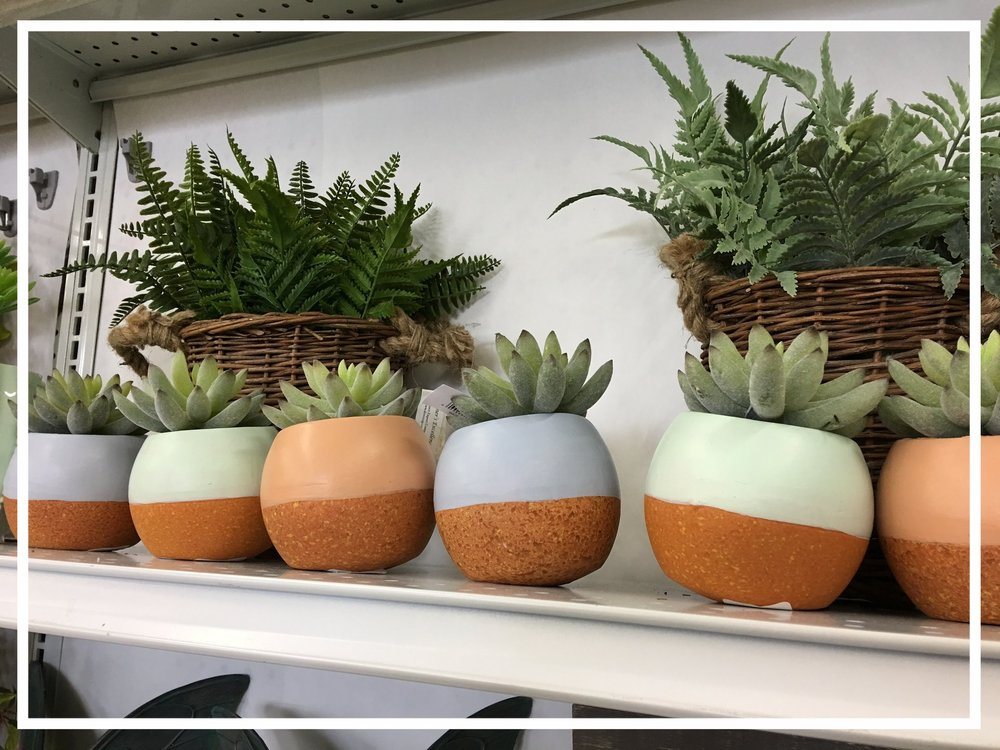 Planter-ly pots
