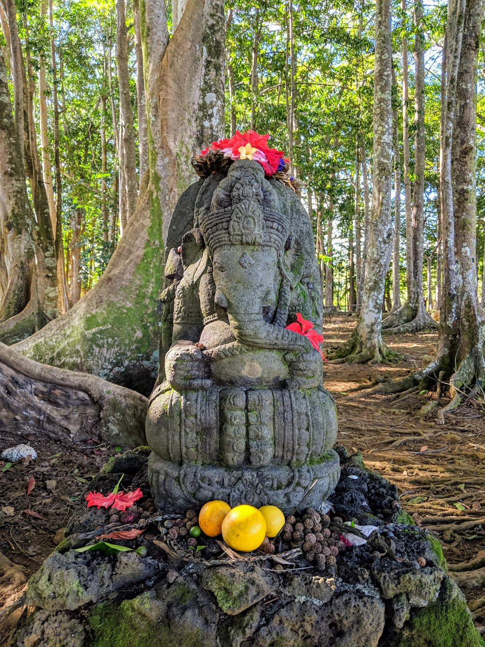 Ganesha @ the sacred forest