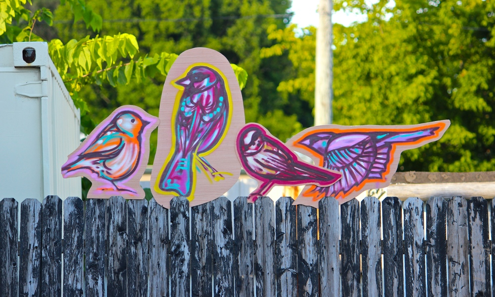 Spray painted birds by Chris Chappell