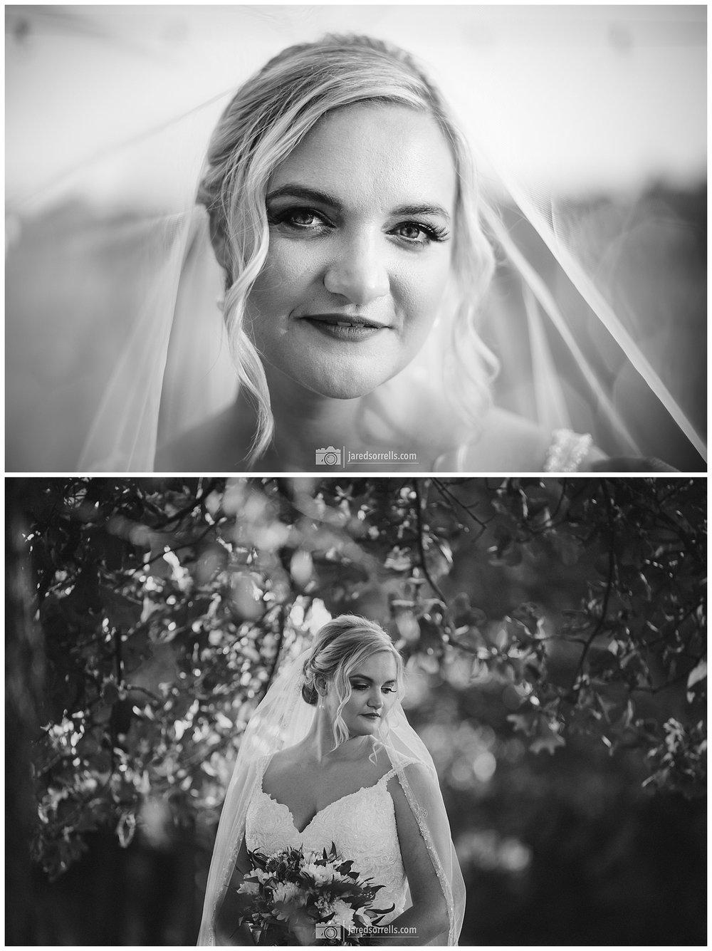 Haley - Bridals-3077-Edit-2.jpg
