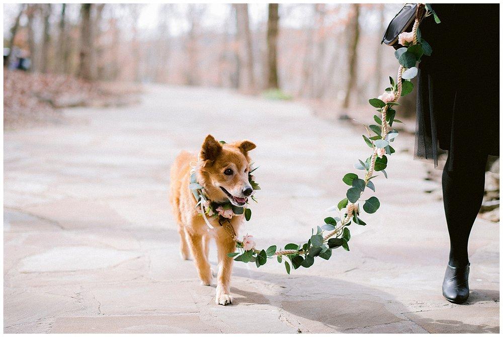 Eureka Springs Wedding-22.jpg