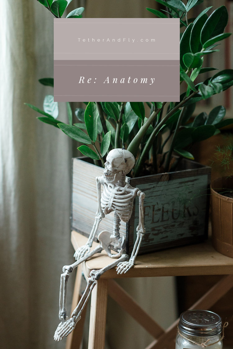 Re: Anatomy — Tether & Fly
