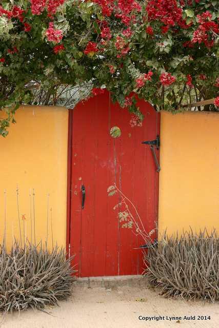 Cabo Pulmo red door.jpg