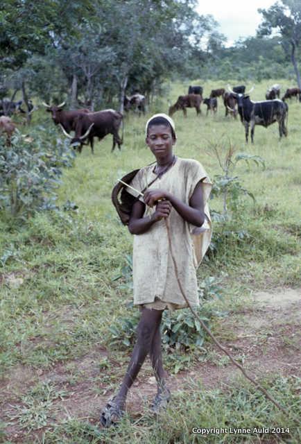 Herder 8x10.jpg