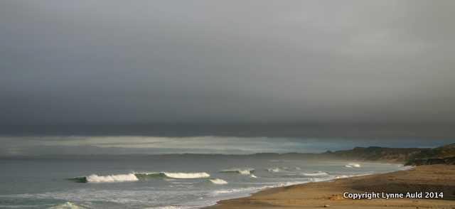 Dawn, Monterey