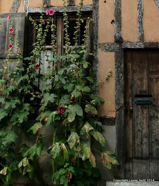 Vernon door
