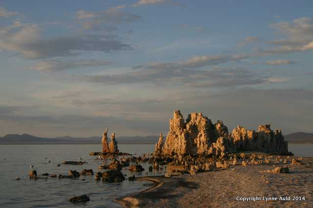 Late Afternoon, Mono Lake