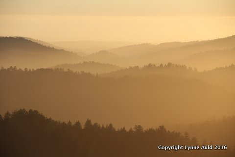 02-Sunset fog RussianRidge.jpg