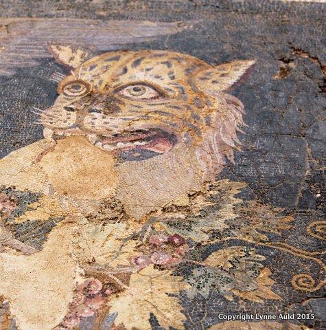 17-Delos mosaic tiger.jpg