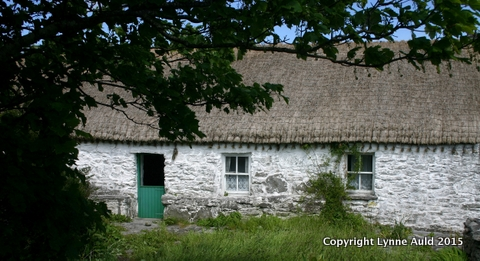 11-Synge cottage pan.jpg
