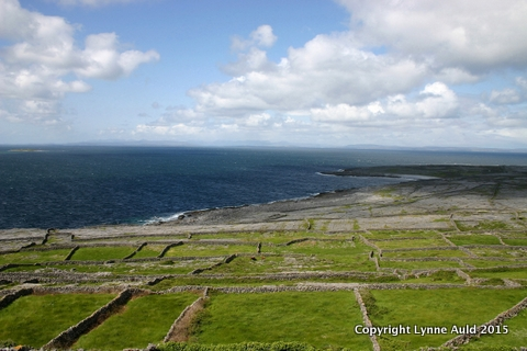 14-Inish Maan fields.jpg