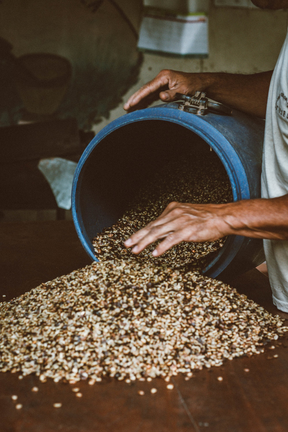 Coffee Roasting in Costa Rica // isitRachelle