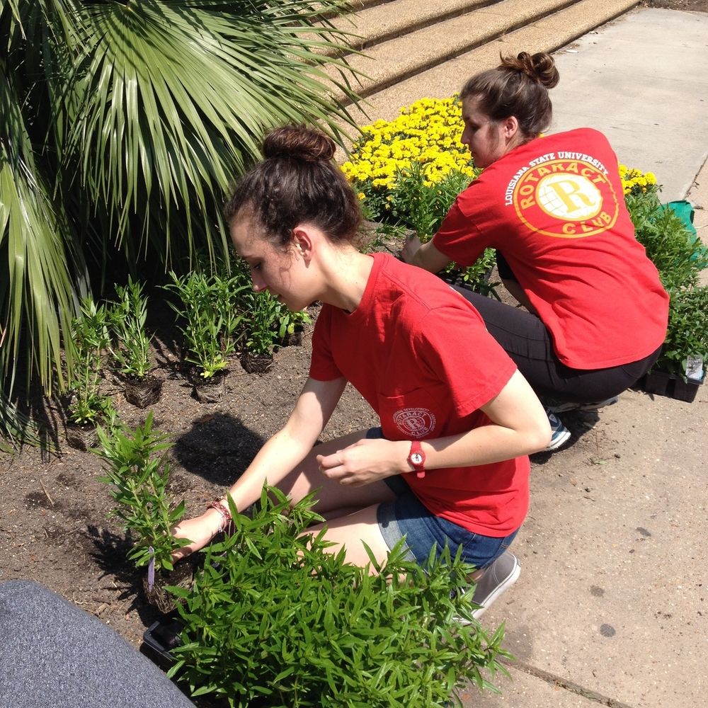 Fellow Rotaract members working near David Boyd Hall on Spring Greening Day.