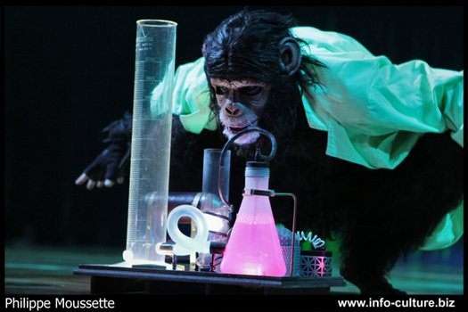 "Joe Putignano as ""Darwin's Monkey"" in the scientist act."