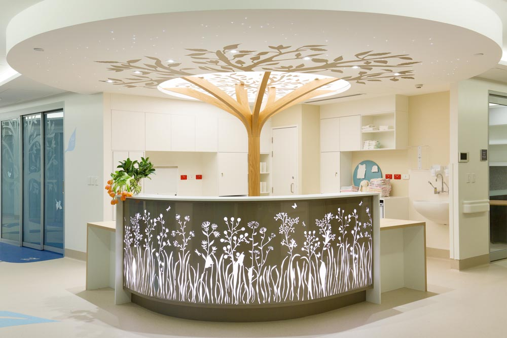 Alexandra Kidd Design The Reveal The Mater Special Care