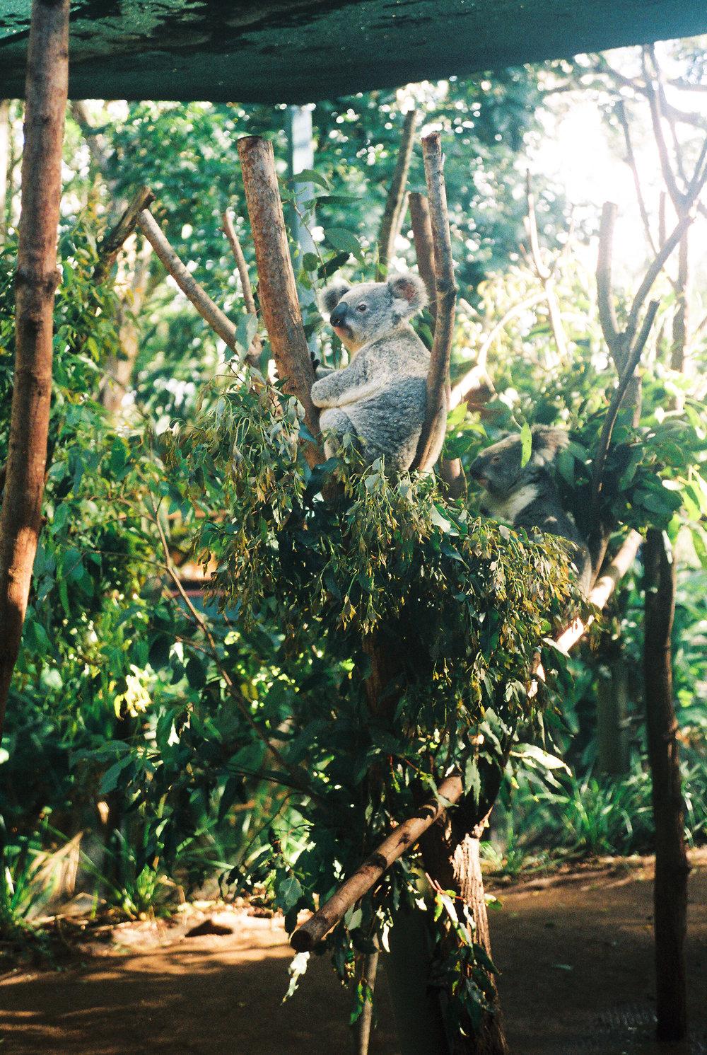 australia-travel-photography-19.jpg