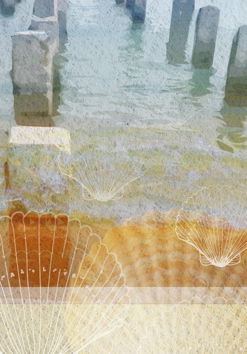 Seashells & Pier