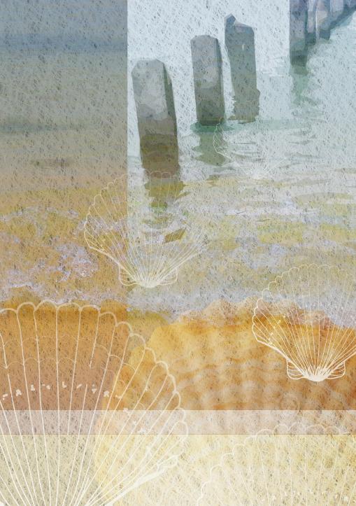 Seashells & Pier 2