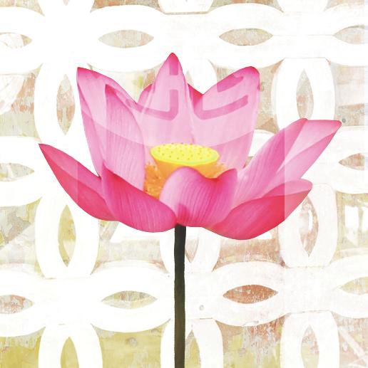 Long Life Lotus