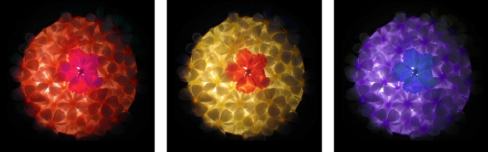 Flower Triptych 2