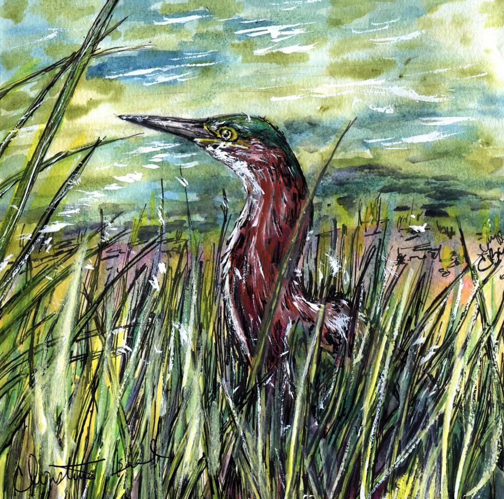 64. Green Heron
