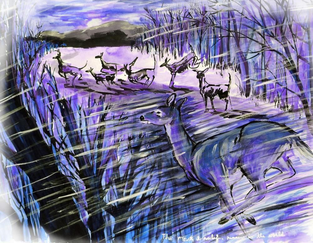 deer blue.jpg