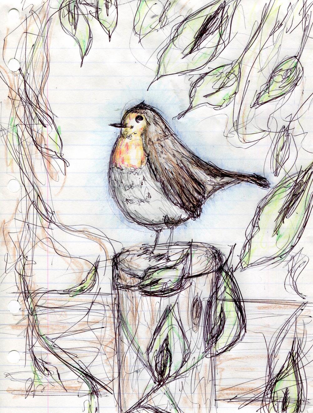 Robin's Robin