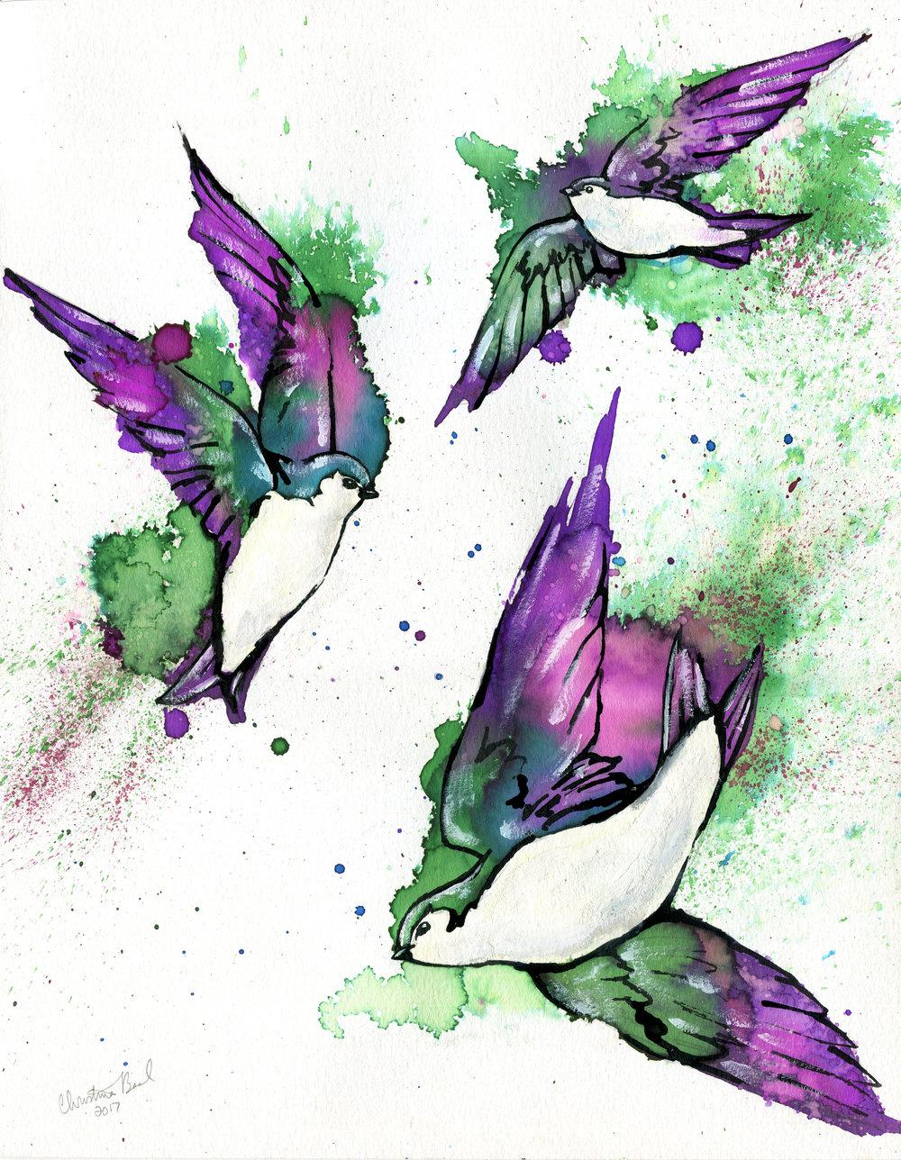 Shimmering Skydancers
