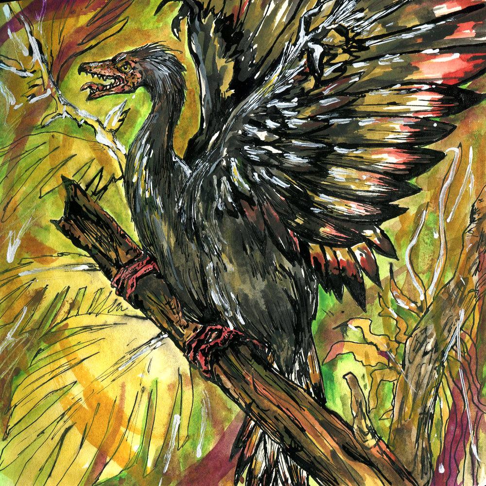 9E. Archaeopteryx