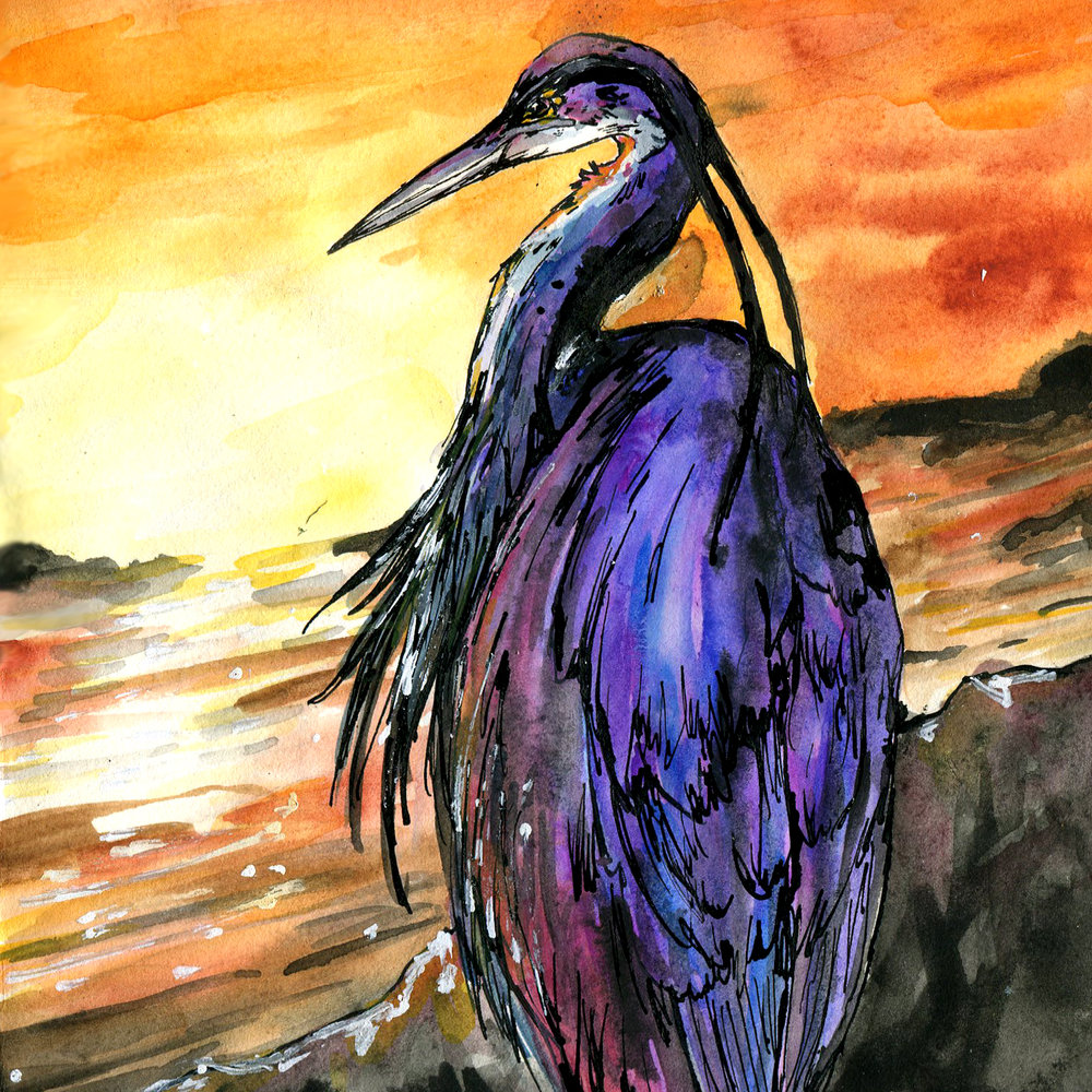 11E. Bennu Heron