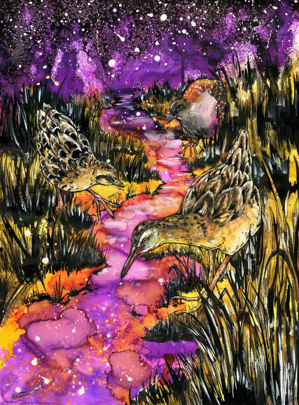 Starlit Swamp Tigers