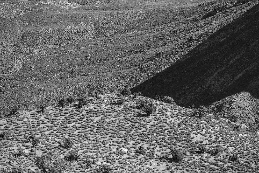 Grand Canyon-0642.JPG