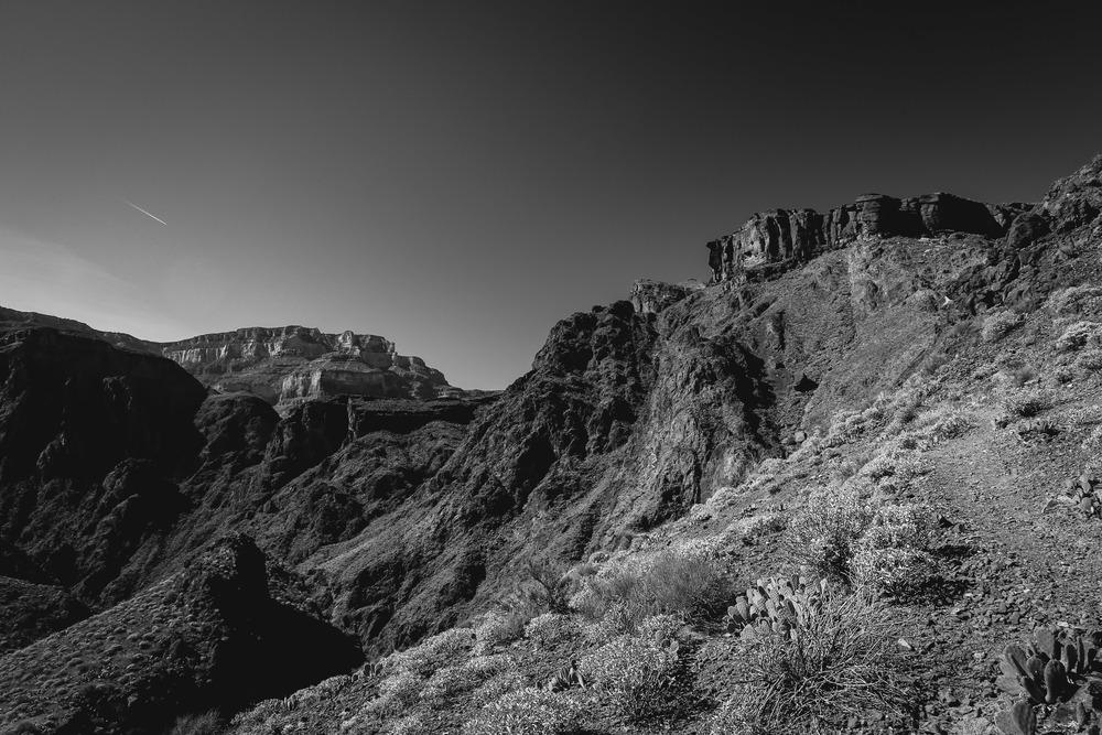 Grand Canyon-1180-2.JPG
